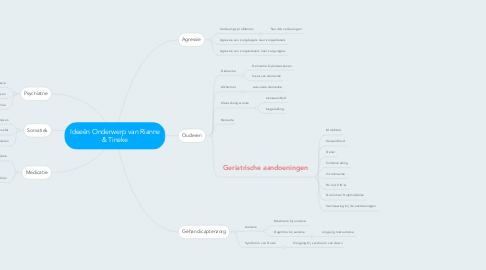 Mind Map: Ideeën Onderwerp van Rianne & Tineke