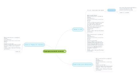 Mind Map: Структура рекламной кампании