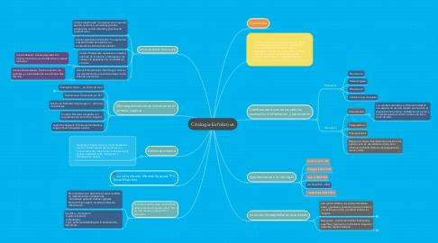 Mind Map: Citologia Exfoliativa