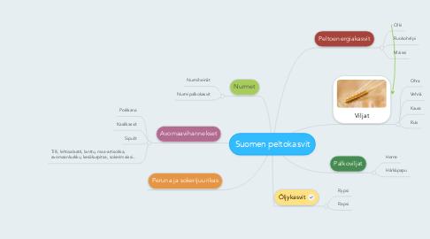 Mind Map: Suomen peltokasvit