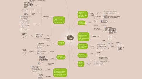 Mind Map: TRABAJO     FINAL.