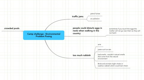 Mind Map: Camp challenge - Environmental Problem Posing