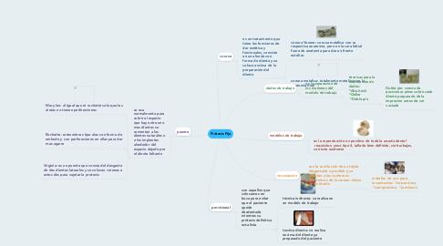 Mind Map: Prótesis Fija