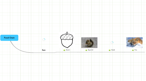 Mind Map: Food Chain