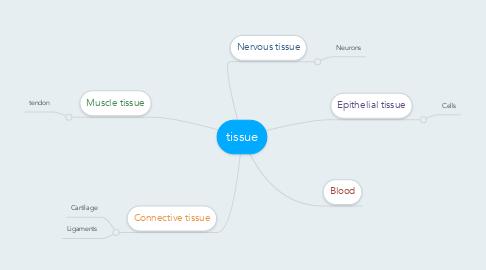 Mind Map: tissue