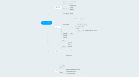 Mind Map: Owner/CEO