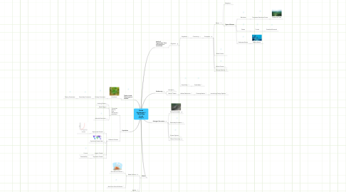 Mind Map: Reade Naudascher's Mind Map Vocab Project