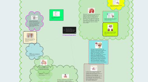 Mind Map: El Sistema Respiratorio.