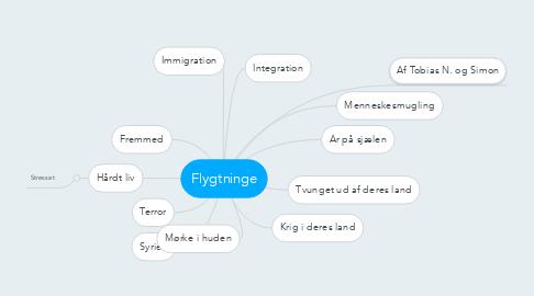Mind Map: Flygtninge
