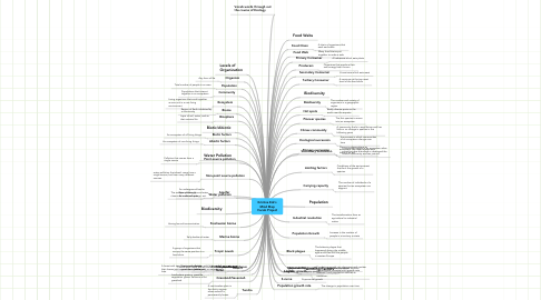 Mind Map: Kristina Eck