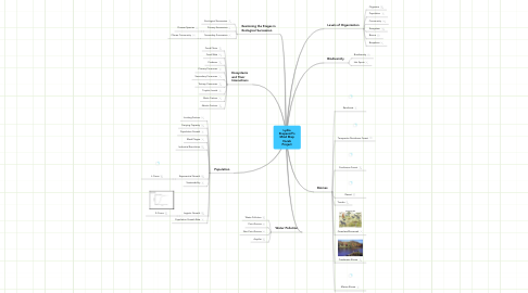 Mind Map: Lydia Stepanoff's Mind Map Vocab Project