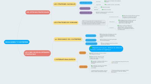 Mind Map: MANAGEMENT D'ENTREPRISE