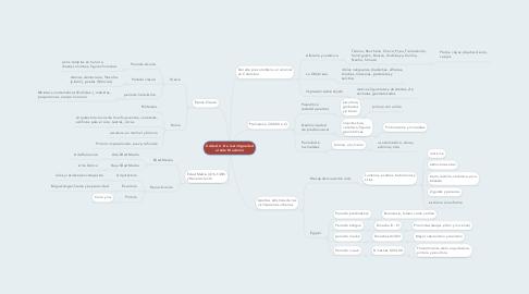 Mind Map: Unidad 2. De la Antigúedad al Arte Moderno