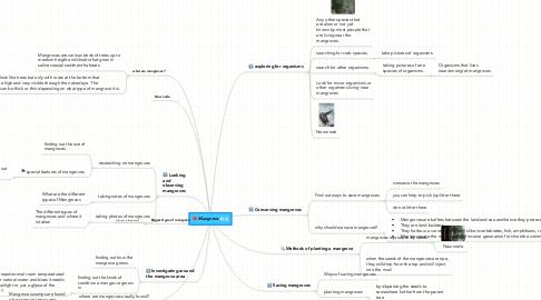 Mind Map: Mangrove
