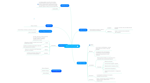 Mind Map: ÁREAS CORTICALES