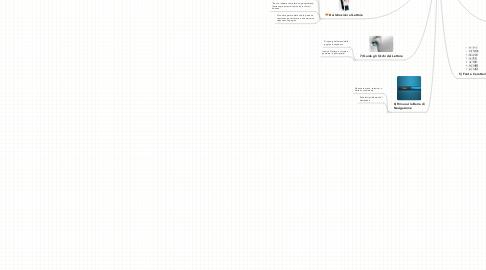 Mind Map: POP - Come Preparare la tua Prima Landing Page  **A Cosa Fare Attenzione**
