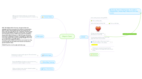 Mind Map: Boys in Cave