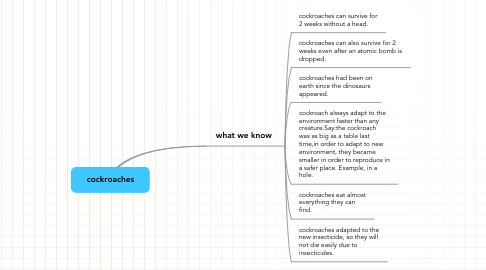 Mind Map: cockroaches