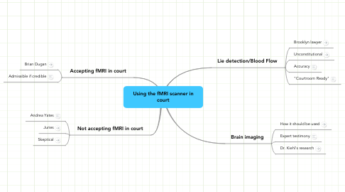 Mind Map: Using the fMRI scanner in court
