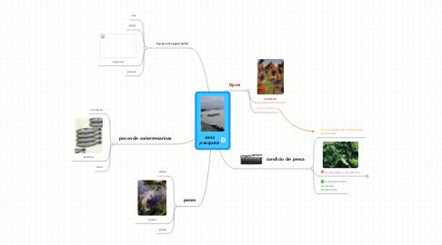 Mind Map: zona pesquera