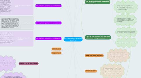 Mind Map: PEC4: Transferencia a la práctica profesional