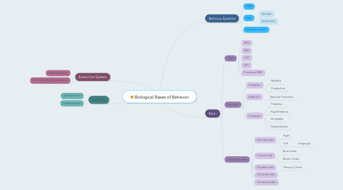 Mind Map: Biological Bases of Behavior