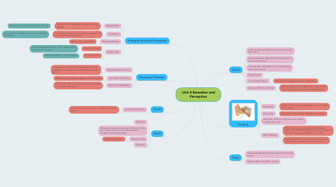 Mind Map: Unit 4-Sensation and Perception
