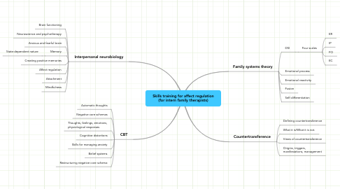 Mind Map: Skills training for affect regulation (for intern family therapists)