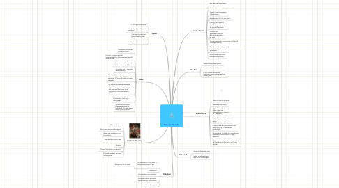 Mind Map: Nello en Patrashe