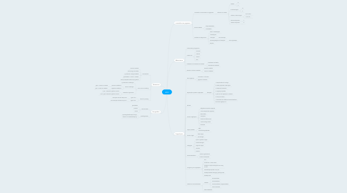 Mind Map: WOZ