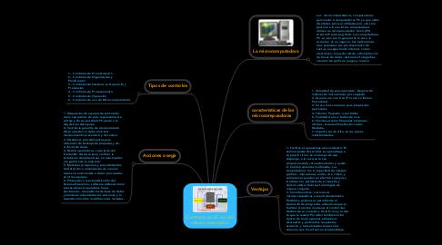 Mind Map: Controles en el uso del microcomputador