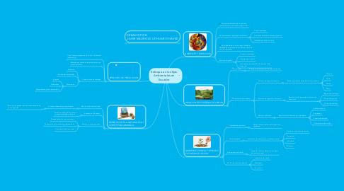 Mind Map: Enfoque en los Ejes Ambientales en Ecuador