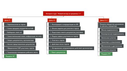 """Mind Map: Экспресс-курс """"Новый взгляд на аукционы 2.0"""""""