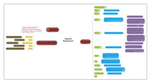 Mind Map: Appareil Respiratoire