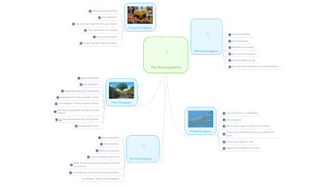 Mind Map: The five kingdoms