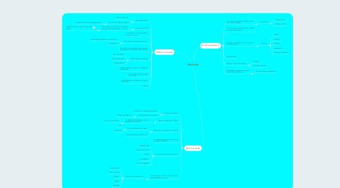 Mind Map: EDAD MEDIA.