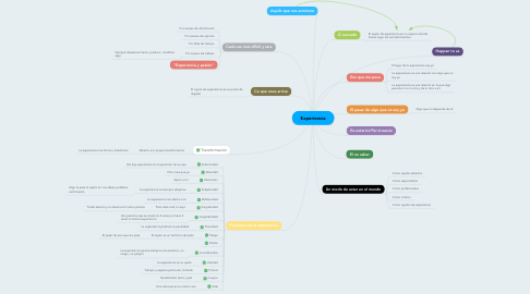 Mind Map: Experiencia