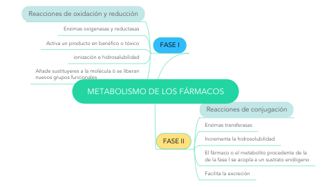 Mind Map: METABOLISMO DE LOS FÁRMACOS