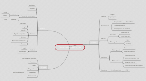 Mind Map: Transmission d'entreprise