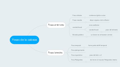 Mind Map: Fosas de la cabeza