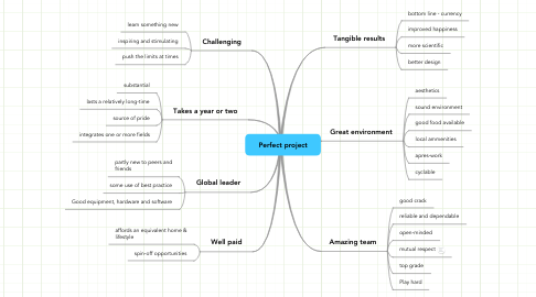 Mind Map: Perfect project