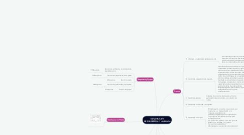 Mind Map: INDUSTRIA DE DETERGENTES Y JABONES