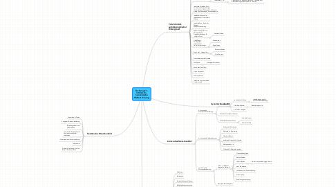 Mind Map: Buchprojekt - intrinsisch-, humanisische Weltanschauung