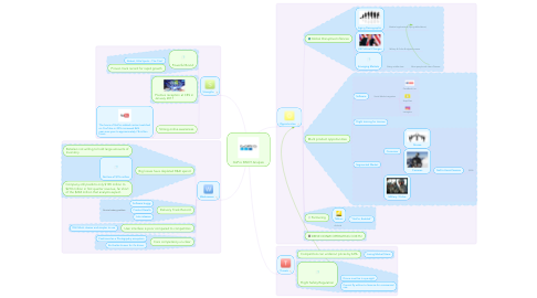 Mind Map: GoPro SWOT Analysis
