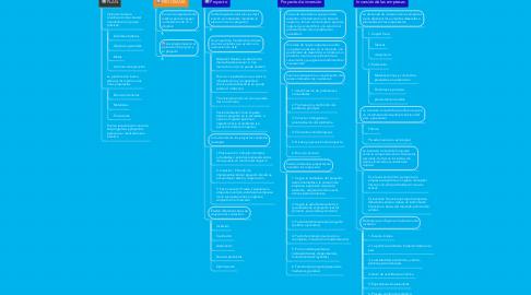 Mind Map: Plan-Programa-Proyecto