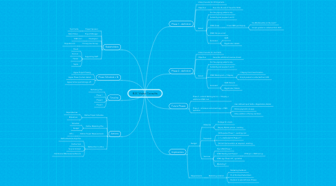 Mind Map: B2C Video Consults