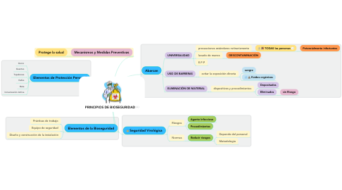 Mind Map: PRINCIPIOS DE BIOSEGURIDAD