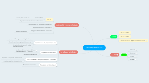 Mind Map: La Disabilità motoria
