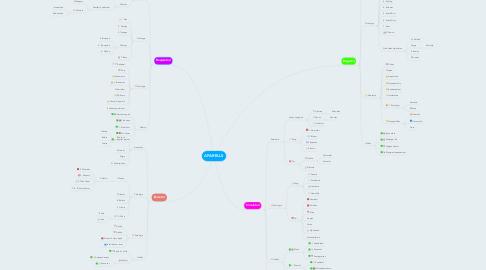Mind Map: APARELLS