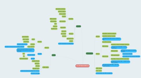 Mind Map: LE SYSTÈME NERVEUX